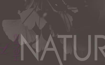 heure nature identite visuelle carte de visite