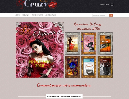 E.Commerce – Web Be Crazy